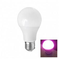 LED Kweek - E27 - 9W - Red4/Blue1