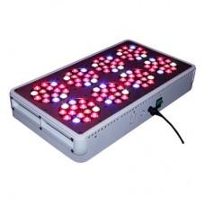 LED Kweeklamp - 120x3W - QUALEDY - 256 Watt